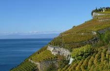 Swiss Wine, Vaud, Lavaux, Assemblée OIV 2019