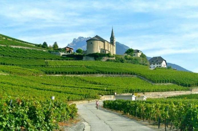 Swiss Wine, Valais, Bourg